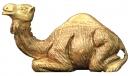 CAMEL ( MEDUIM)